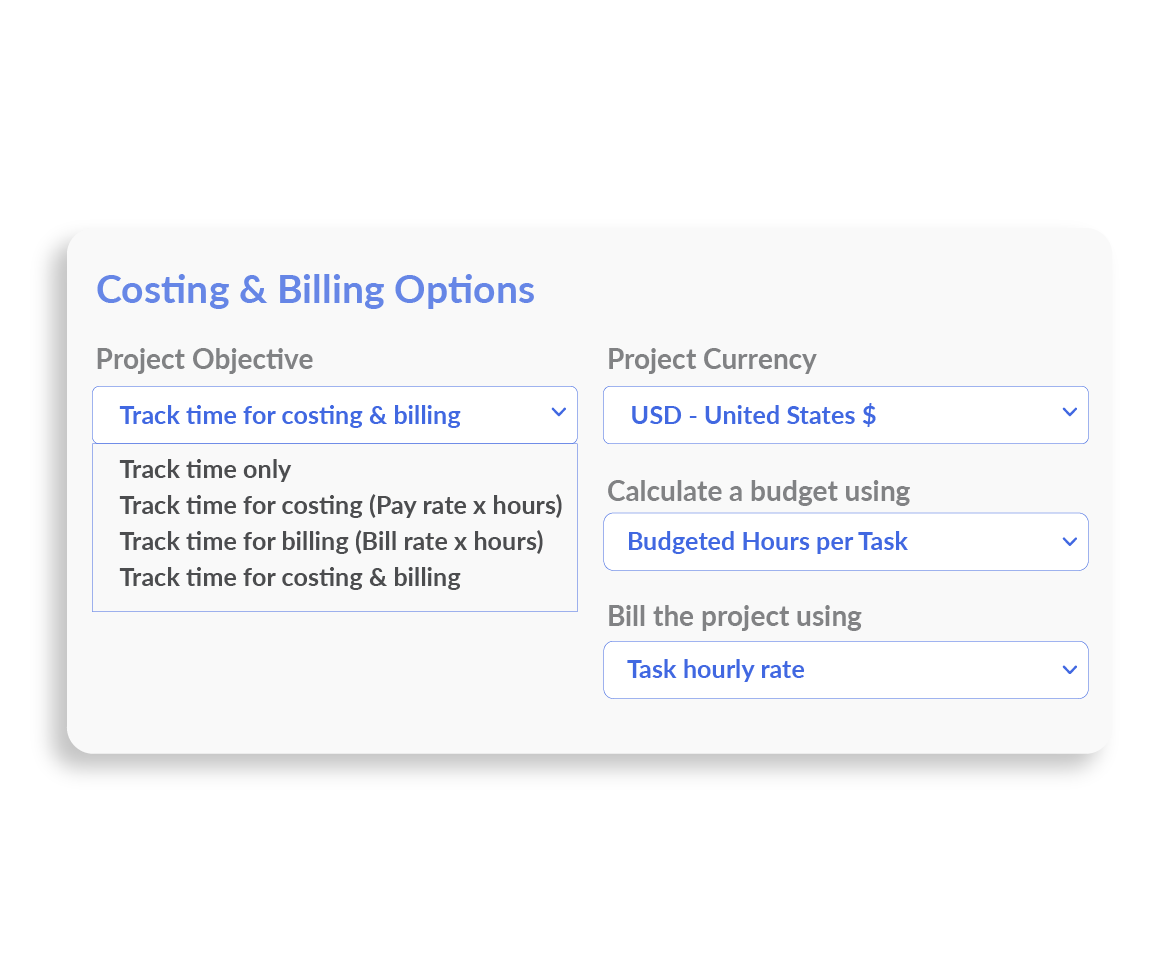 Project Costing and Billing Options